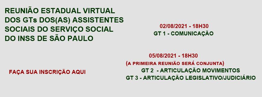 Reunião estadual virtual dos GTs dos(as) assistentes sociais do serviço social do INSS de São Paulo